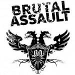 Dobrovolníci na Brutal Assault